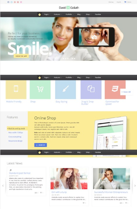 David Goliath Business And Portfolio Theme